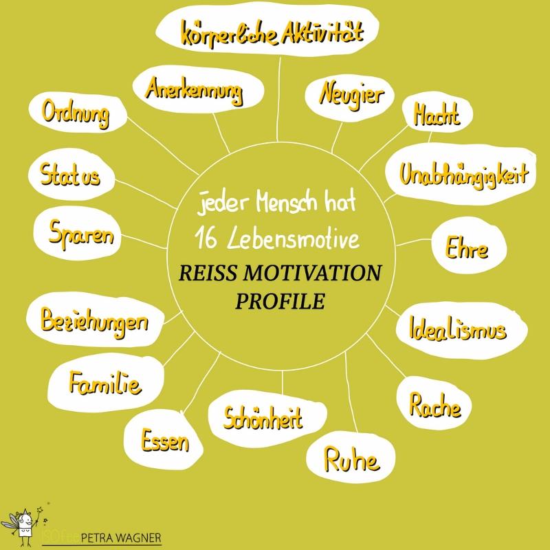 Analyseverfahren der Persönlichkeit anhand der Reiss Motivation Profile.